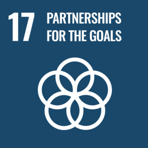 partnerships to achieve the goals